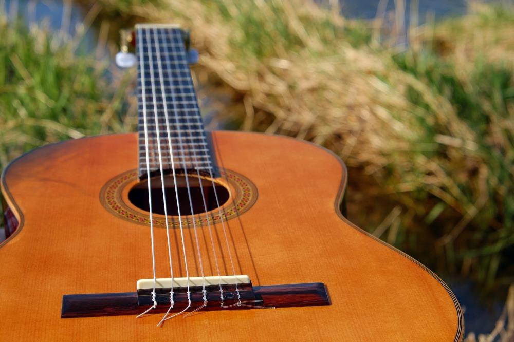 Guitar Red Dirt NC